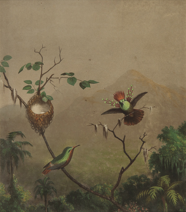 [PAIR OF EXQUISITE CHROMOLITHOGRAPHS OF BRAZILIAN HUMMINGBIRDS INTENDED FOR HEADE'S ABANDONED BOOK PROJECT, Gems of Brazil]. Martin Johnson Heade.