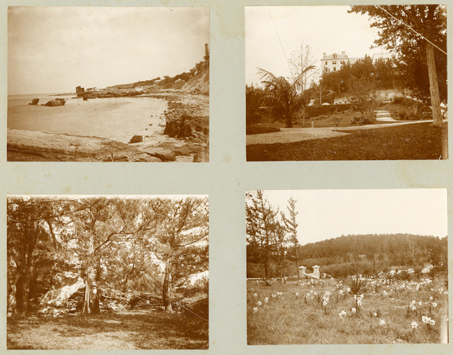 [ALBUM CONTAINING FORTY-FOUR PHOTOGRAPHS OF LATE 19th CENTURY BERMUDA, COMPILED BY A NEW YORK TOURIST]. Bermuda Photographica.