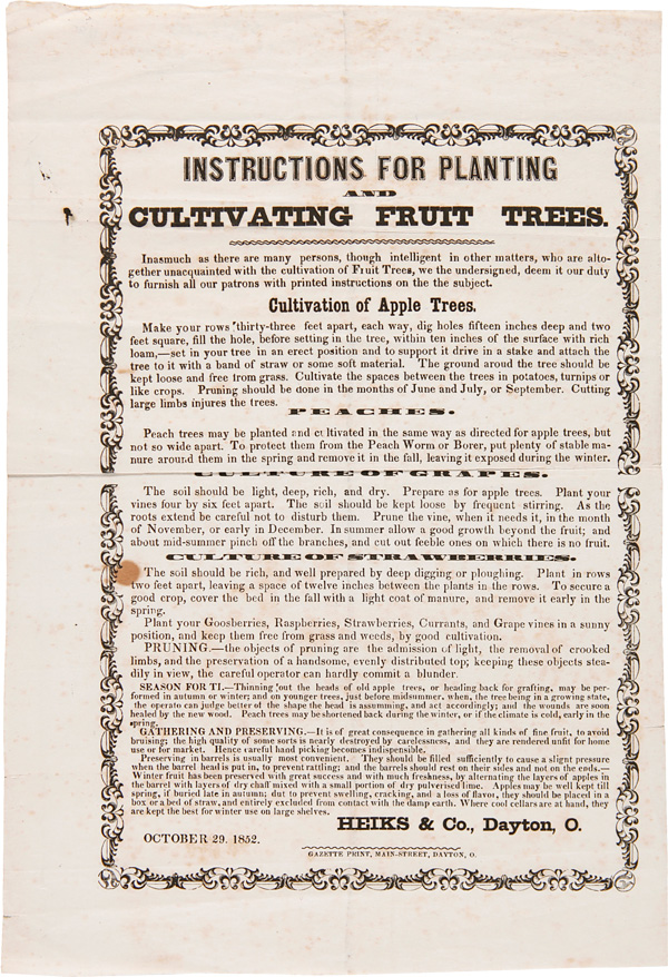 INSTRUCTIONS FOR PLANTING AND CULTIVATING FRUIT TREES [caption title]. Fruit Trees, Heiks and Company.