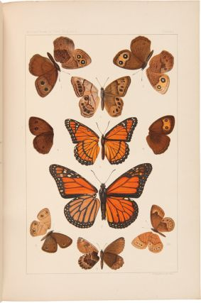 THE BUTTERFLIES OF THE EASTERN UNITED STATES AND CANADA WITH SPECIAL REFERENCE TO NEW ENGLAND....