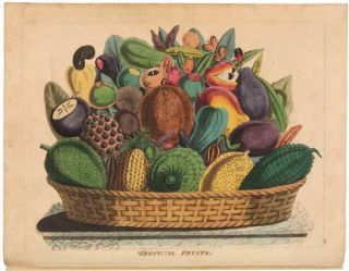 SKETCHES TOWARDS A HORTUS BOTANICUS AMERICANUS; OR, COLOURED PLATES (WITH A CATALOGUE AND CONCISE...