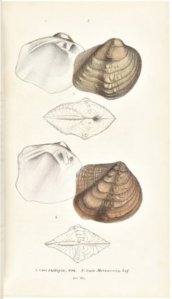MONOGRAPHY OF THE FAMILY UNIONIDAE. OR NAIADES OF LAMARCK, (FRESH WATER BIVALVE SHELLS,) OF NORTH...
