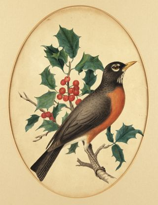 [FOUR ORIGINAL ORNITHOLOGICAL WATERCOLOR AND PENCIL DRAWINGS BY 19th-CENTURY BOTANICAL AND ZOOLOGICAL ARTIST ISAAC SPRAGUE].