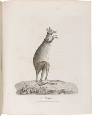 JOURNAL OF A VOYAGE TO NEW SOUTH WALES WITH SIXTY-FIVE PLATES OF NON DESCRIPT ANIMALS, BIRDS, LIZARDS, SERPENTS, CURIOUS CONES OF TREES AND OTHER NATURAL PRODUCTIONS.