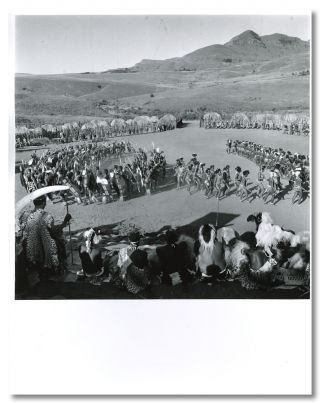 Original Gelatin Silver Print Photograph of a Zulu Ceremonial Assembly]. Yousuf Karsh